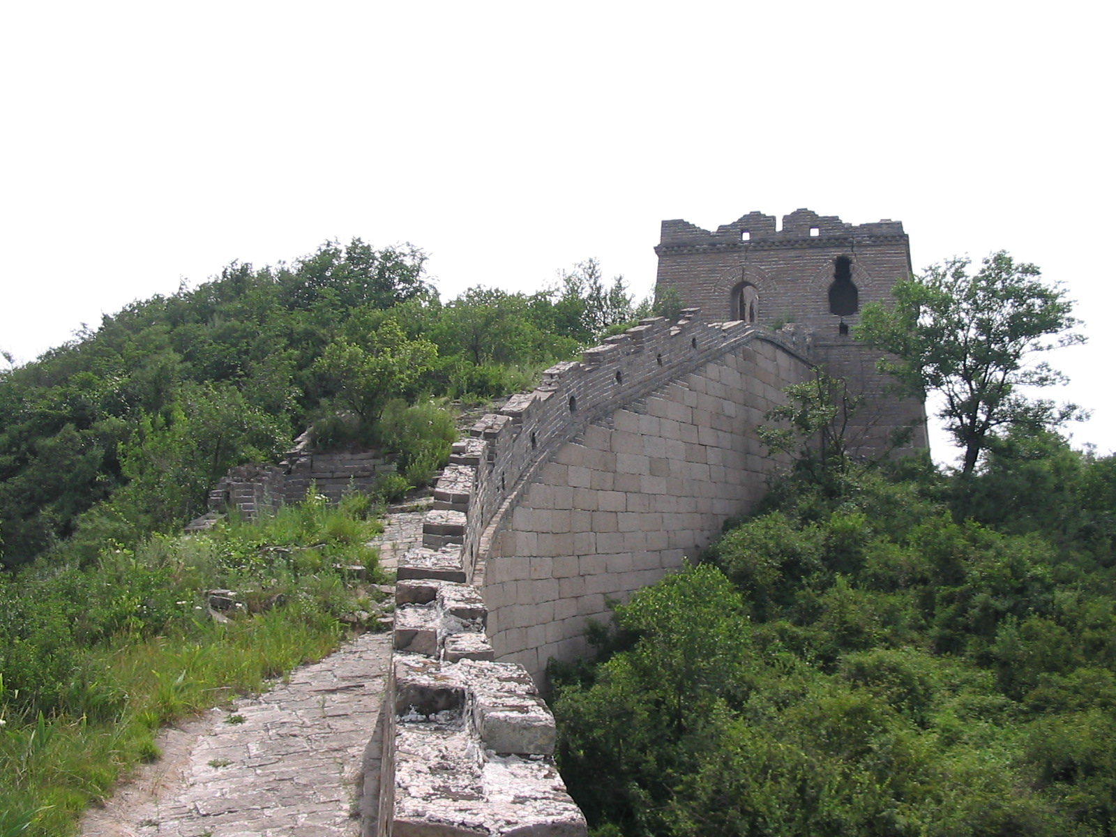 Overgrown Great Wall